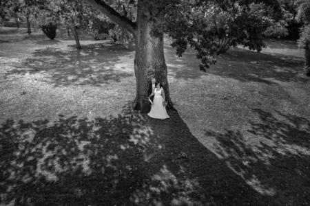 Drohne Hochzeit Schoss Oberschwappach